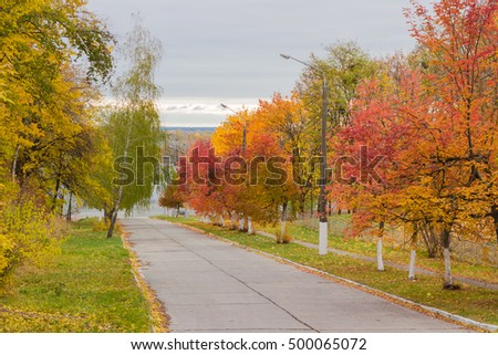 Street with concrete road surface descend down and various trees with autumn foliage on the sides in cloudy day