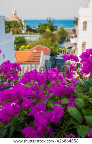 Street with houses, a top view of the sea on the building of the Lotus.Nha Trang. Vietnam - stock photo