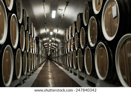 Stretching into the distance barrels filled with wine in the cellar of the winery in the Crimea - stock photo