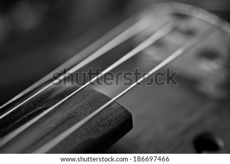 String violin close-up in black and white - stock photo