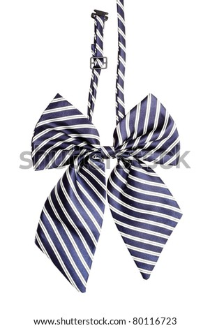 Striped bow tie for women, isolated on white