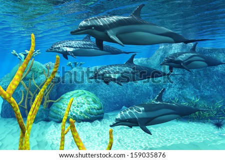 Striped Dolphins - A pod of Striped Dolphins swim along a reef looking for fish prey. - stock photo