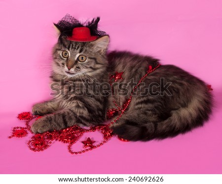 Striped fluffy kitten with Christmas beads lying on pink background - stock photo