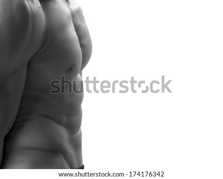 Strong bodybuilder man with perfect abs, shoulders,biceps, triceps and chest flexing his muscles - stock photo