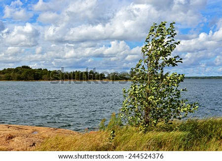 Strong wind. Aland Islands in Baltic Sea. Finland - stock photo