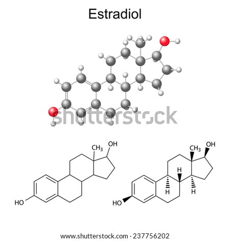 Structural chemical formulas and model of estradiol molecule - female sex hormone, 2D & 3D Illustration,  isolated on white background, raster