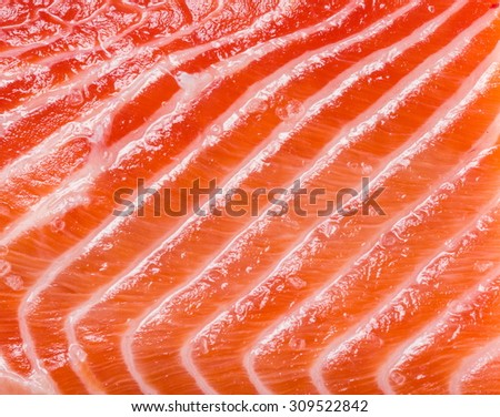 Structure of fresh salmon. Macro shot.