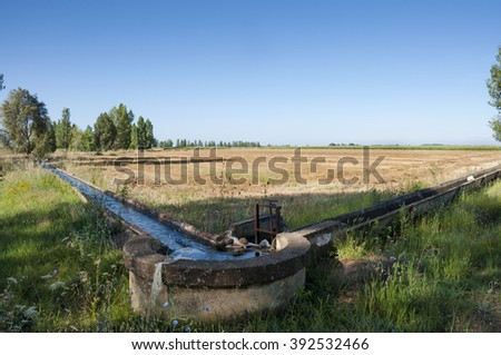 Stubble fields and poplar groves in an irrigated agricultural landscape in the plain of the River Esla, in Leon Province, Spain - stock photo