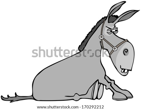 Stubborn donkey - stock photo