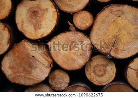 Stucked wood texture