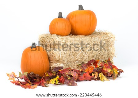 Studio isolated fall pumpkins on hay bale with oak leaves - stock photo