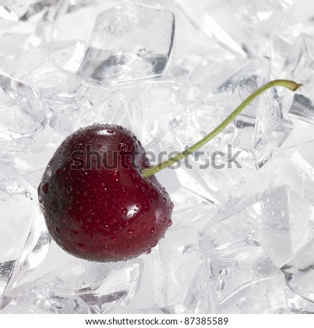 Studio photography of a wet cherry with dewdrops in a background of crushed ice cubes - stock photo
