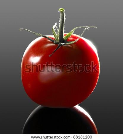 """studio shot of a """"perfect"""" tomato in dark reflective back - stock photo"""