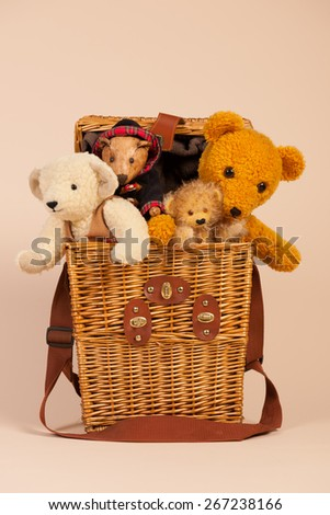 Stuffed hand made bears in toy box on beige background - stock photo