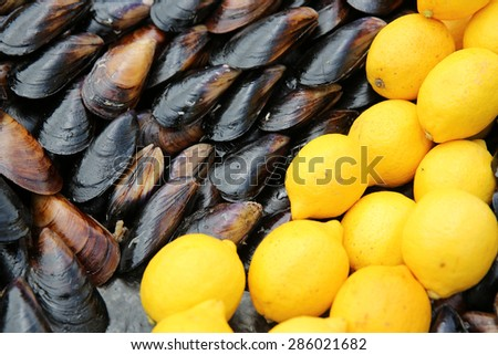 Stuffed Mussels with Lemon in Istanbul. Turkey - stock photo