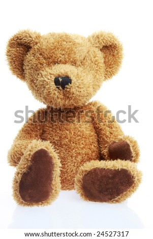 stuffed teddy bear isolated on white shot in studio