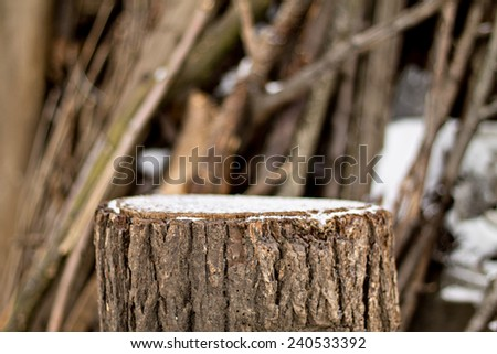 Stump in the winter on a background of firewood
