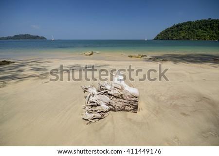 Stump on the beach at beautiful sea Thailand - stock photo