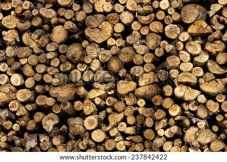 stumps of wood stacked - stock photo