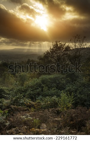 Stunning Autumn Fall sunset over forest landscape with moody dramatic sky - stock photo