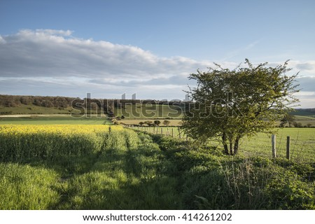 Stunning English countryside landscape over fields at sunset - stock photo
