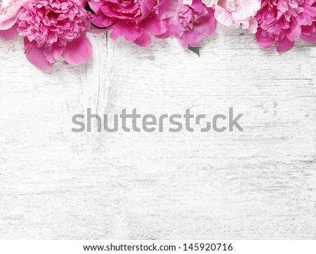 Stunning pink peonies on white rustic wooden background. Copy space - stock photo