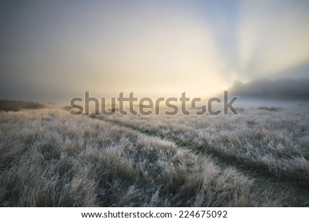 Stunning sun beams light up through thick fog of Autumn Fall frosty landscape - stock photo