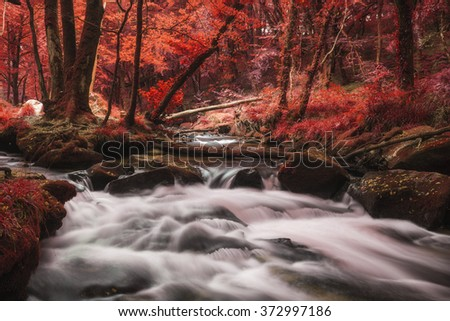 Stunning surreal alternate landscape of river flowing through forest - stock photo