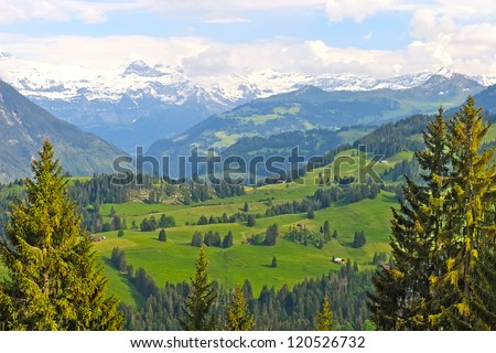 Stunning view of swiss alps and valley in the summer - stock photo