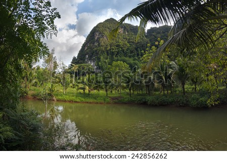 Stunning view to the karst formation hills, river with fish and tropical greenery - stock photo