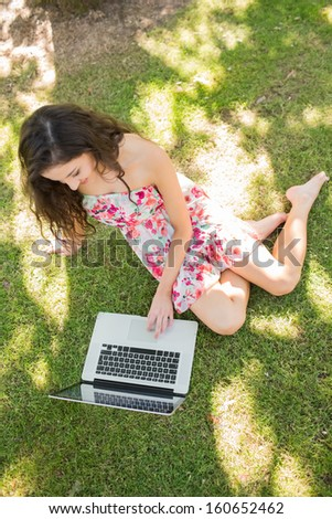 Stylish attractive brunette sitting on the grass using laptop in a park on a sunny day - stock photo