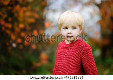 Stylish boy wearing red sweater. Portrait of toddler child in fall