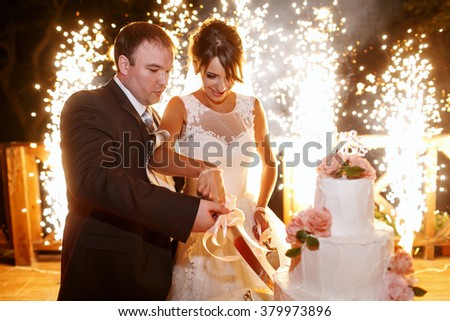 Stylish  bride and groom in the restaurant cutting cake - stock photo