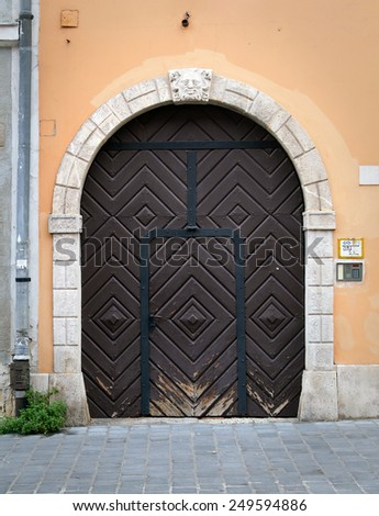 Stylish entrance door with wooden ornaments. - stock photo
