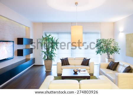 Stylish modern tv room with comfortable couch - stock photo