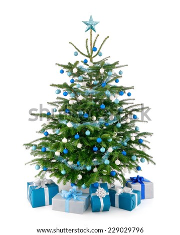 Stylish studio shot of a beautiful lush Christmas tree decorated in blue and silver, with matching gift boxes arranged in front of it, isolated on pure white background - stock photo