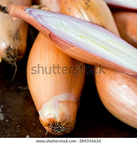 Subtly sweet and succulent Echalion shallots.Selective Focus - stock photo