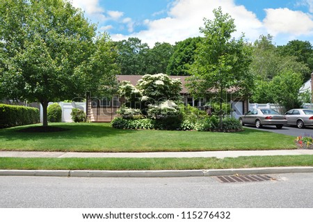 Suburban Home Front Yard Blooming Plant Sidewalk Curb Street Residential Neighborhood - stock photo