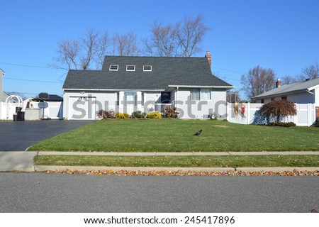 Suburban landscaped crow walking across lawn of home sunny autumn day residential neighborhood USA - stock photo