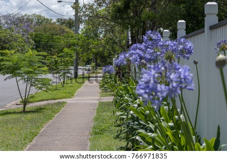 Suburban Street With Flower Garden And Nature Strip Trees Typical Of  Suburban Brisbane, Australia