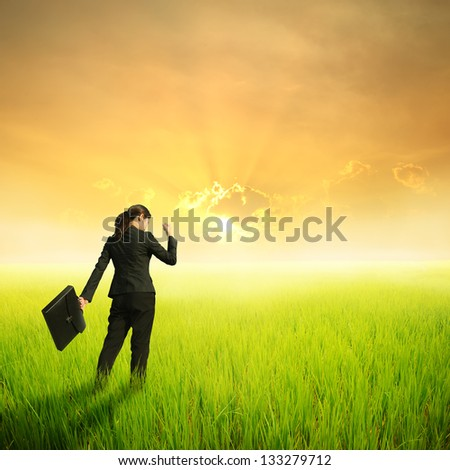 Success Business woman holding bag in green rice field and sunset