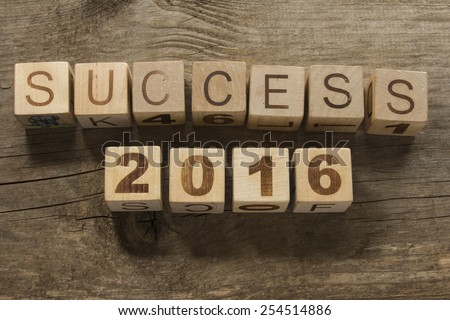success 2016 on a wooden background - stock photo