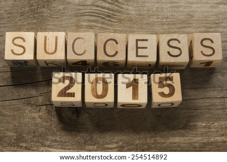 success 2015 on a wooden background - stock photo