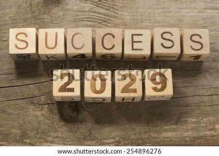 success 2029 on a wooden background - stock photo