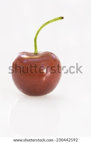 Succulent fresh single Cherry on white background - stock photo