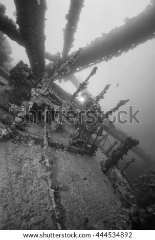 SUDAN, Red Sea, U.W. photo, Umbria wreck - FILM SCAN - stock photo