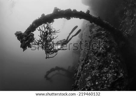 SUDAN, Red Sea, U.W. photo, wreck diving, Umbria wreck - FILM SCAN - stock photo