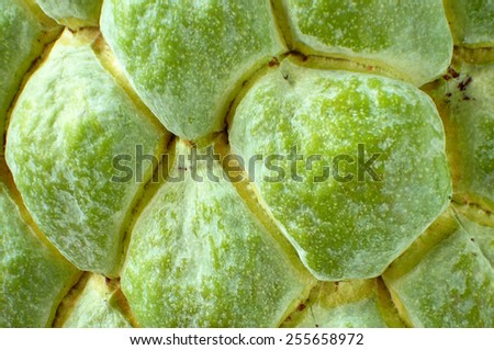 sugar apple close up - stock photo