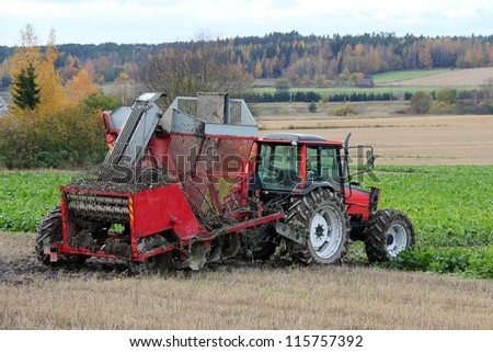 Sugar beet harvester and red tractor by field in autumn. - stock photo