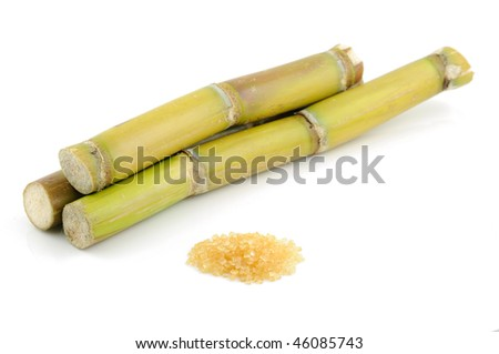 Sugar cane and brown sugar in isolated white background - stock photo